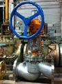 锤齿轮氧气专用截止阀