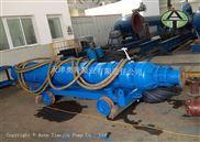 高山漂流用600米扬程卧式潜水泵_性价比高