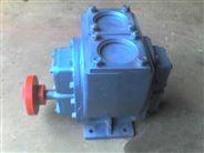 65YHCB-35汽車改裝行業泵 石油輸送齒輪泵
