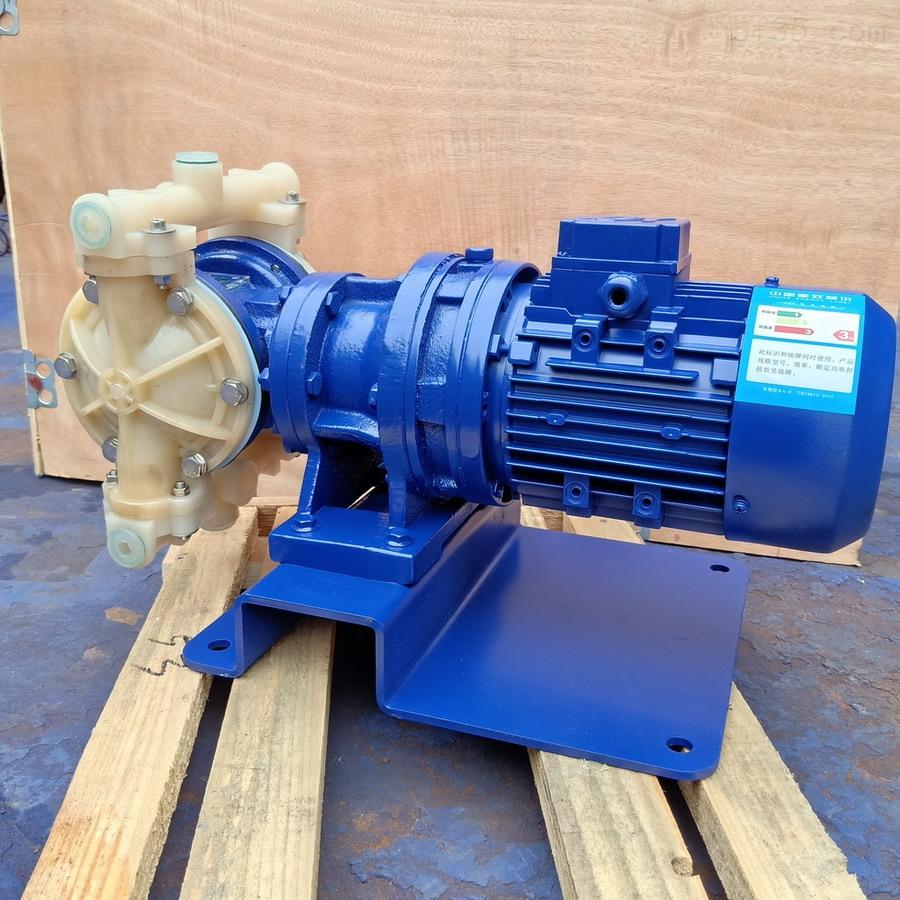 PVDF电动隔膜泵