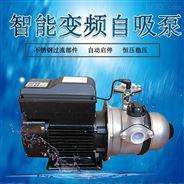 臥式變頻增壓泵0.75KW別墅公寓自動穩壓泵