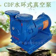 工业用抽气泵DN50真空泵