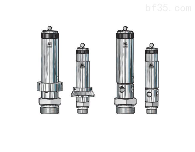 特种阀门Niezgodka safety valve 24型